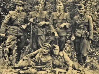 Propaganda Raids of the Ukrainian Insurgent Army in Slovakia (Czechoslovakia) in 1945–1946: Structure and Forms of Czechoslovak Resistance